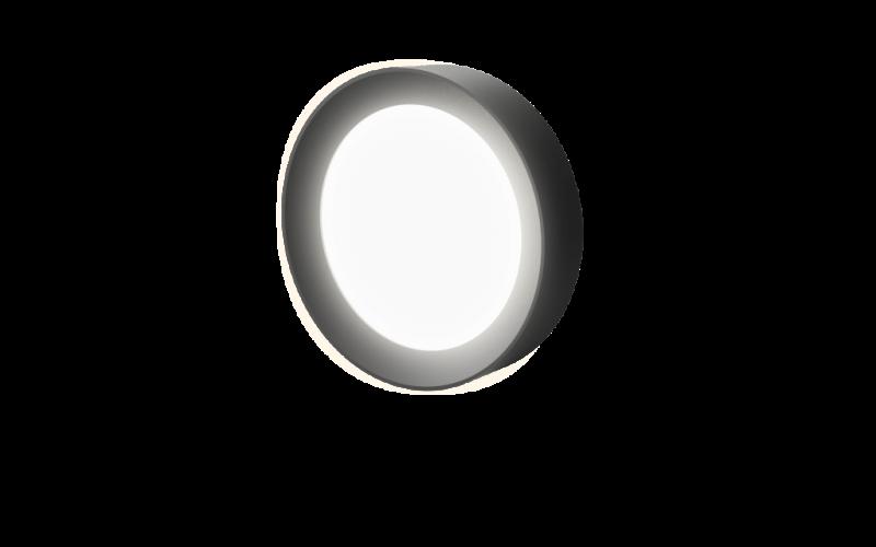 Surface_RD_DF_8.5_Lit